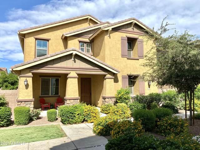 1035 S Storment Lane, Gilbert, AZ 85296 (MLS #6228671) :: Yost Realty Group at RE/MAX Casa Grande