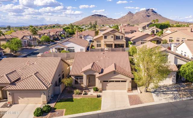 1230 E Presidio Road, Phoenix, AZ 85022 (MLS #6228683) :: Yost Realty Group at RE/MAX Casa Grande