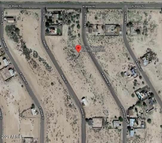 3920 N Bandelier Drive, Eloy, AZ 85131 (MLS #6228697) :: The Ellens Team
