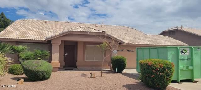 2415 N Saffron, Mesa, AZ 85215 (MLS #6228780) :: Yost Realty Group at RE/MAX Casa Grande