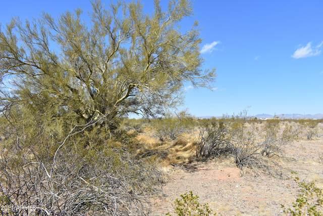 223XX W Myers Street, Wittmann, AZ 85361 (MLS #6228784) :: Long Realty West Valley