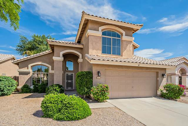 1696 W Bluebird Drive, Chandler, AZ 85286 (MLS #6228883) :: Yost Realty Group at RE/MAX Casa Grande