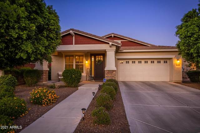 12359 N 152nd Drive, Surprise, AZ 85379 (MLS #6228896) :: Midland Real Estate Alliance
