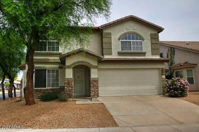 16036 N 11TH Avenue #1112, Phoenix, AZ 85023 (MLS #6228913) :: Yost Realty Group at RE/MAX Casa Grande