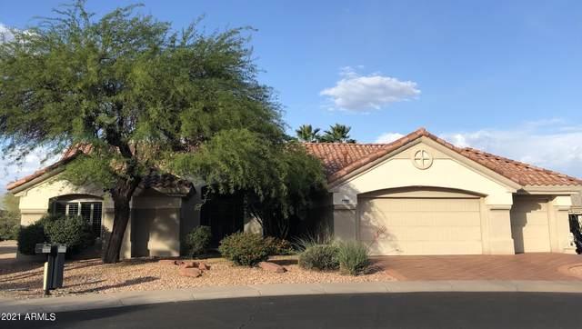 14704 W Tomahawk Way, Sun City West, AZ 85375 (MLS #6228956) :: Long Realty West Valley