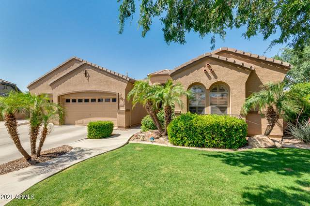 2653 E Winged Foot Court, Chandler, AZ 85249 (#6228977) :: The Josh Berkley Team