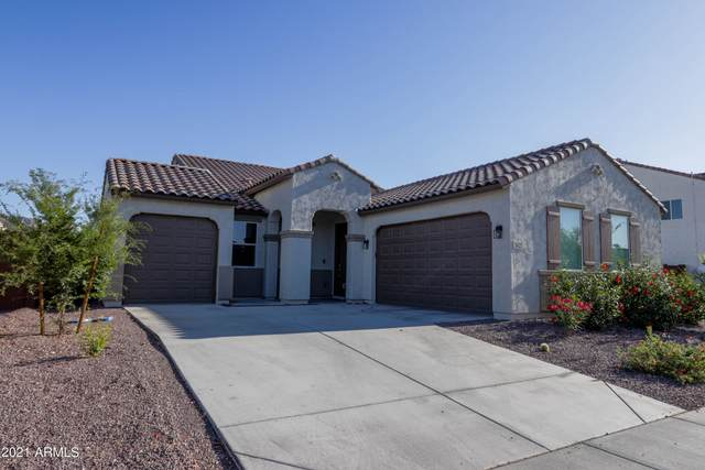 3427 W Melody Drive, Laveen, AZ 85339 (MLS #6229018) :: Long Realty West Valley