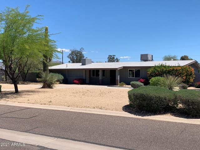 12209 N 65TH Place, Scottsdale, AZ 85254 (MLS #6229050) :: The Riddle Group