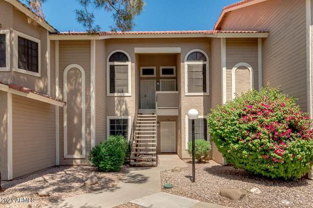 5230 E Brown Road #266, Mesa, AZ 85205 (MLS #6229077) :: Conway Real Estate