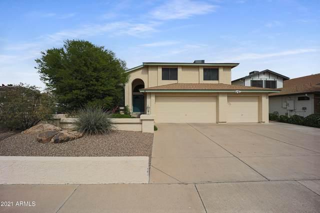 11033 N 64th Lane, Glendale, AZ 85304 (MLS #6229100) :: The Luna Team