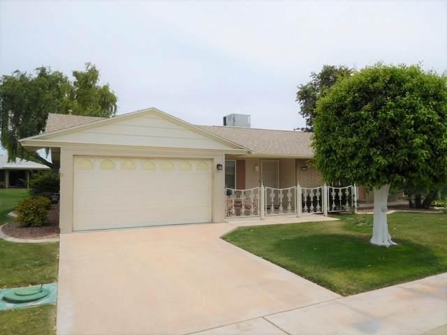 10432 W El Capitan Circle S, Sun City, AZ 85351 (MLS #6229144) :: Long Realty West Valley