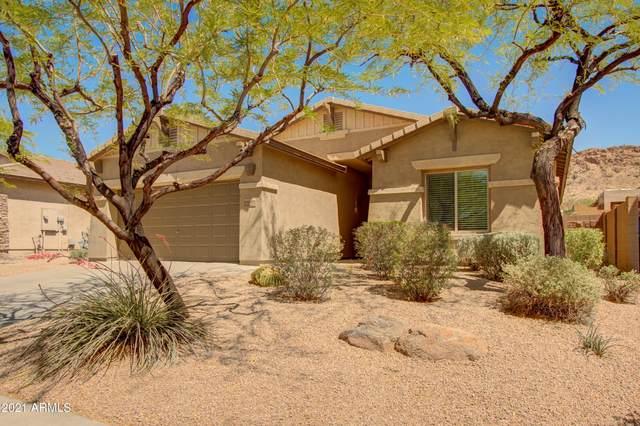 8462 W Quail Track Drive, Peoria, AZ 85383 (MLS #6229179) :: Yost Realty Group at RE/MAX Casa Grande