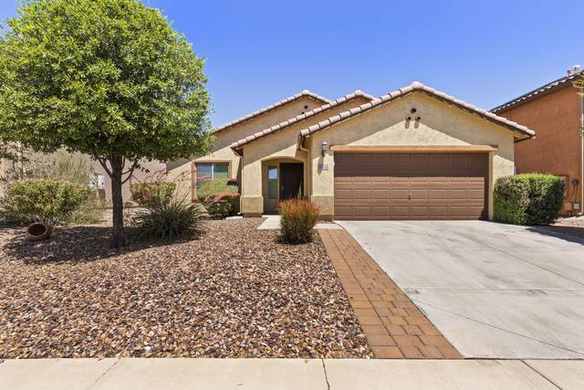 8030 W Pleasant Oak Way, Florence, AZ 85132 (#6229206) :: The Josh Berkley Team