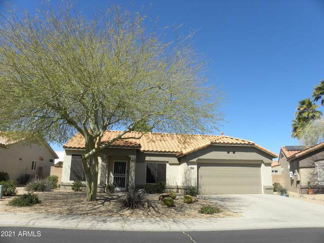 13654 W Antelope Drive, Sun City West, AZ 85375 (MLS #6229297) :: The Luna Team