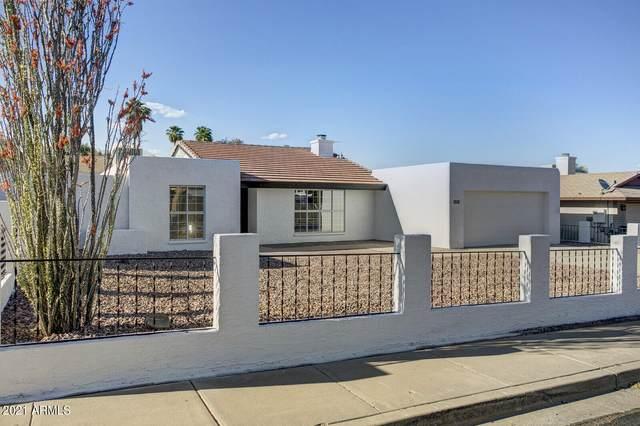 2010 E Karen Drive, Phoenix, AZ 85022 (MLS #6229328) :: My Home Group