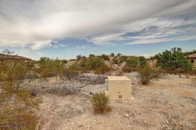 18236 W Santa Alberta Lane, Goodyear, AZ 85338 (MLS #6229338) :: Yost Realty Group at RE/MAX Casa Grande