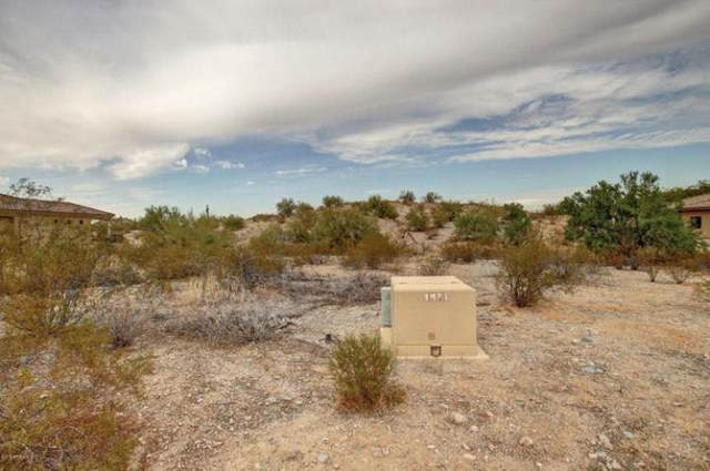 18236 W Santa Alberta Lane, Goodyear, AZ 85338 (MLS #6229338) :: My Home Group