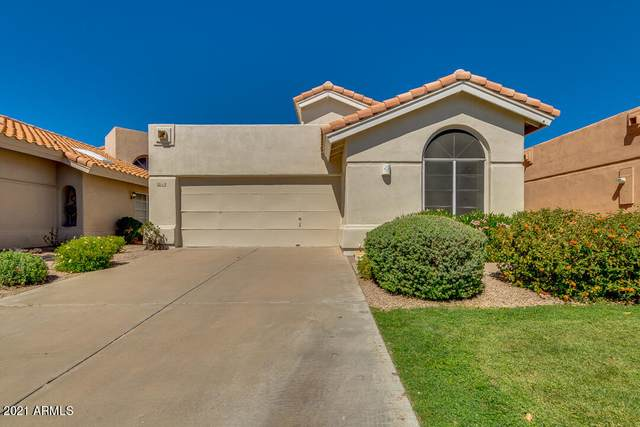 6458 E Sugarloaf Street, Mesa, AZ 85215 (MLS #6229350) :: The Luna Team