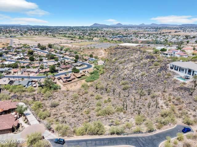 1539 W Saint Moritz Lane, Phoenix, AZ 85023 (MLS #6229441) :: Yost Realty Group at RE/MAX Casa Grande