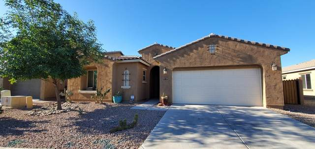 40661 W Park Hill Drive, Maricopa, AZ 85138 (MLS #6229486) :: Yost Realty Group at RE/MAX Casa Grande