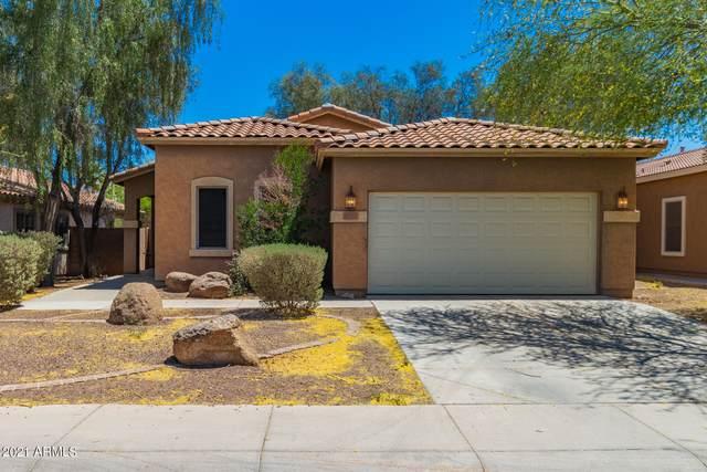 20503 N Ancon Avenue, Maricopa, AZ 85139 (MLS #6229524) :: Yost Realty Group at RE/MAX Casa Grande