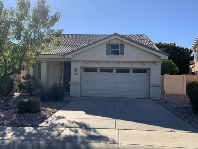 7013 W Tonopah Drive, Glendale, AZ 85308 (MLS #6229533) :: Yost Realty Group at RE/MAX Casa Grande