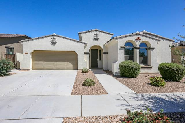 22466 E Tierra Grande, Queen Creek, AZ 85142 (#6229560) :: The Josh Berkley Team