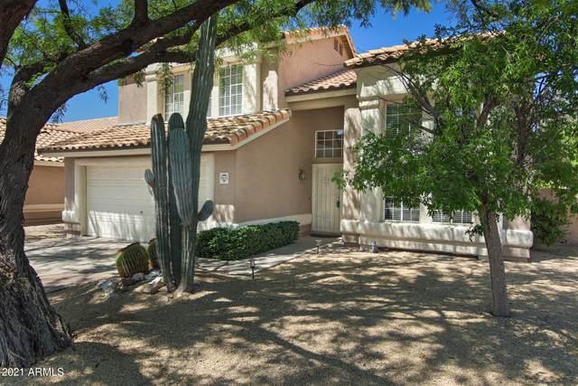 14614 N Glenpoint Drive, Fountain Hills, AZ 85268 (MLS #6229651) :: The Luna Team
