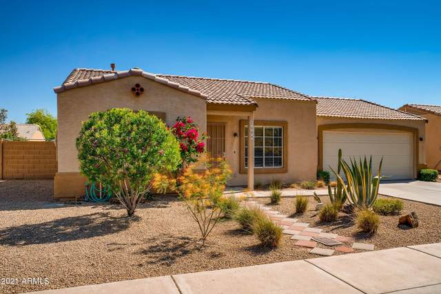 2609 E Angela Drive, Phoenix, AZ 85032 (MLS #6229669) :: Yost Realty Group at RE/MAX Casa Grande