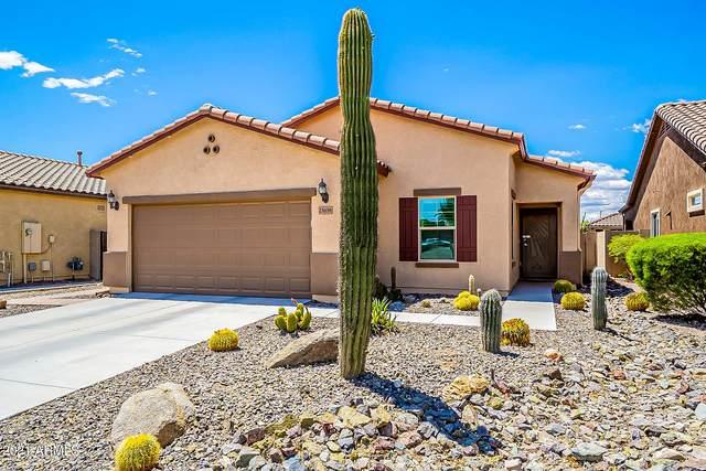 25658 N 107TH Lane, Peoria, AZ 85383 (MLS #6229709) :: The Luna Team