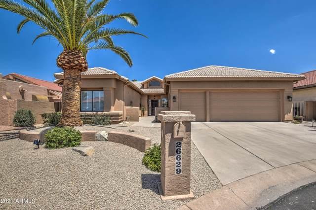 26629 S Queen Palm Court, Sun Lakes, AZ 85248 (MLS #6229748) :: The Copa Team | The Maricopa Real Estate Company