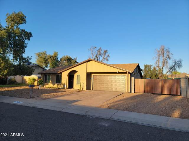 17031 N 29TH Avenue, Phoenix, AZ 85053 (MLS #6229757) :: Yost Realty Group at RE/MAX Casa Grande