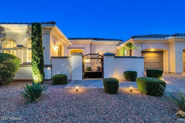 13221 W Los Bancos Drive, Sun City West, AZ 85375 (#6229780) :: The Josh Berkley Team