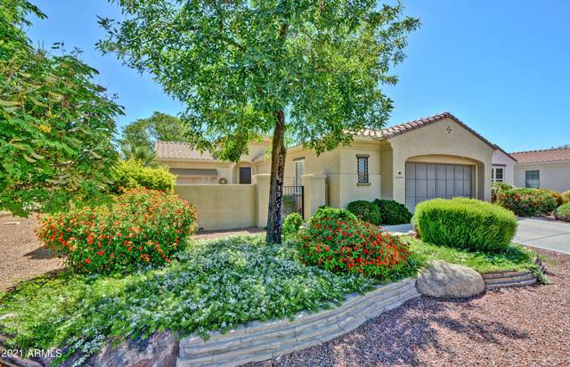 22707 N Las Positas Drive, Sun City West, AZ 85375 (MLS #6229844) :: Kepple Real Estate Group