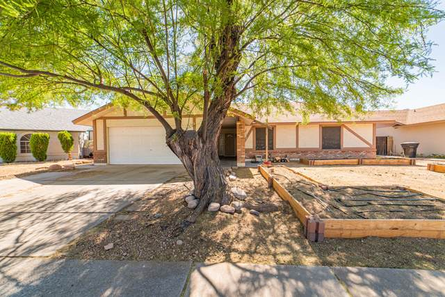 828 N Quail Circle, Mesa, AZ 85205 (MLS #6229886) :: Arizona 1 Real Estate Team