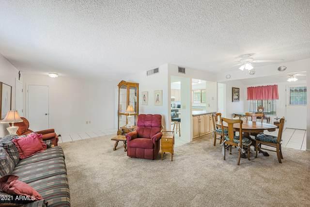 11087 W Timberline Drive, Sun City, AZ 85351 (MLS #6229925) :: Yost Realty Group at RE/MAX Casa Grande