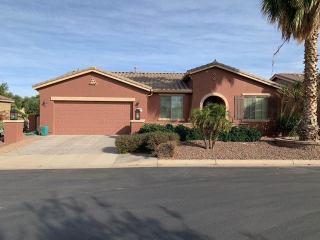20175 N Leo Lane, Maricopa, AZ 85138 (MLS #6229963) :: Yost Realty Group at RE/MAX Casa Grande
