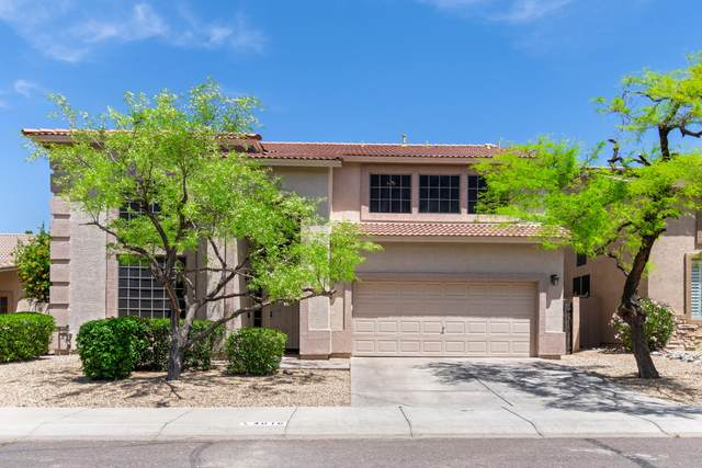 4016 E Prickly Pear Trail, Phoenix, AZ 85050 (MLS #6229998) :: Openshaw Real Estate Group in partnership with The Jesse Herfel Real Estate Group