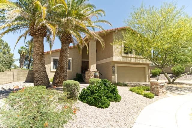 2120 E Crocus Drive, Phoenix, AZ 85022 (MLS #6230041) :: Yost Realty Group at RE/MAX Casa Grande