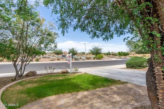 19633 W Harrison Street, Buckeye, AZ 85326 (MLS #6230046) :: Yost Realty Group at RE/MAX Casa Grande