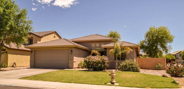 775 W Desert Hills Drive, San Tan Valley, AZ 85143 (MLS #6230054) :: Yost Realty Group at RE/MAX Casa Grande