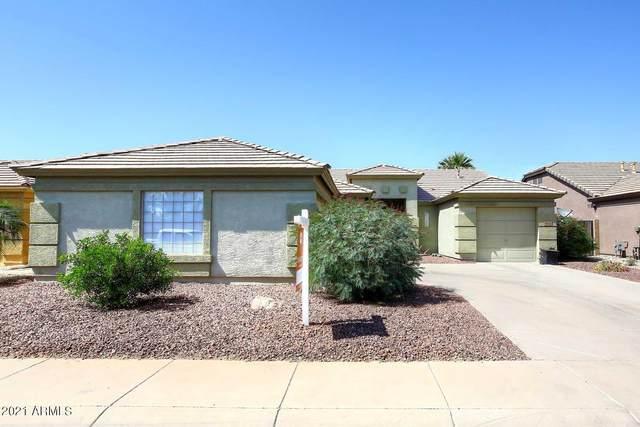 43222 W Mccord Drive, Maricopa, AZ 85138 (MLS #6230057) :: Yost Realty Group at RE/MAX Casa Grande