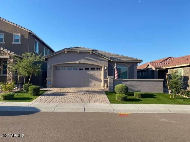 4219 W Palace Station Road, Phoenix, AZ 85087 (MLS #6230136) :: Yost Realty Group at RE/MAX Casa Grande