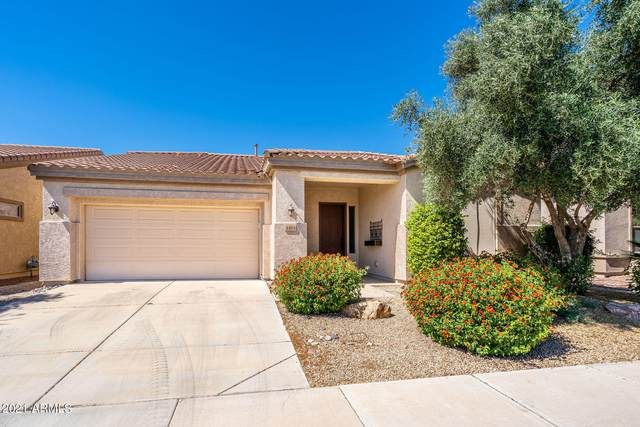 4484 E Carob Drive, Gilbert, AZ 85298 (MLS #6230144) :: Long Realty West Valley