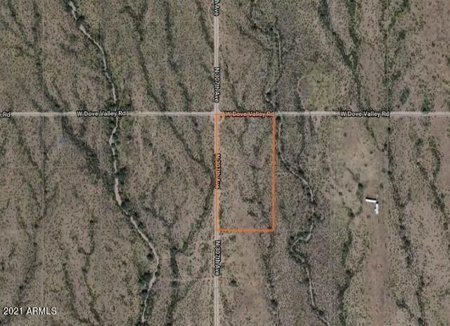 307XX W Dove Valley Road, Wittmann, AZ 85361 (MLS #6230202) :: Long Realty West Valley