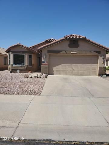 10944 E Delta Avenue, Mesa, AZ 85208 (MLS #6230208) :: Yost Realty Group at RE/MAX Casa Grande