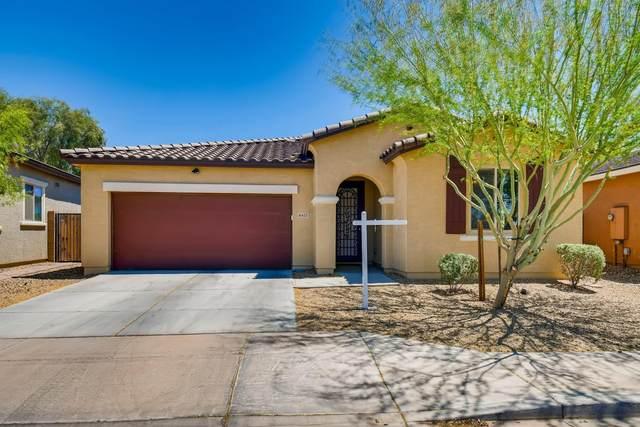 6413 S 47TH Drive, Laveen, AZ 85339 (MLS #6230290) :: Yost Realty Group at RE/MAX Casa Grande