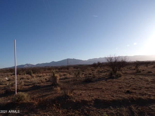 37.80 ac Talking Wind Trail, Willcox, AZ 85643 (MLS #6230359) :: The Newman Team