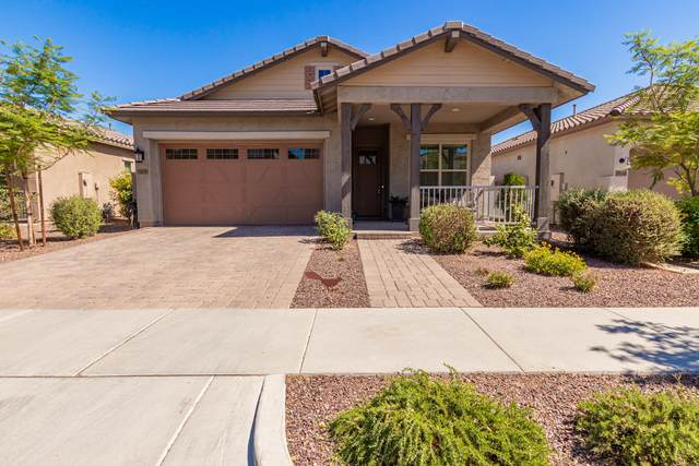 20579 W Edgemont Avenue, Buckeye, AZ 85396 (MLS #6230394) :: D & R Realty LLC
