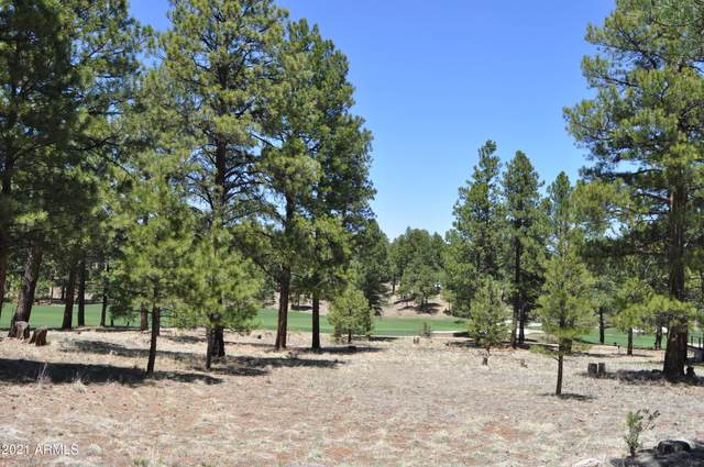 1600 E Castle Hills Drive, Flagstaff, AZ 86005 (MLS #6230470) :: The Luna Team